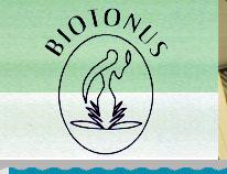 biotonus